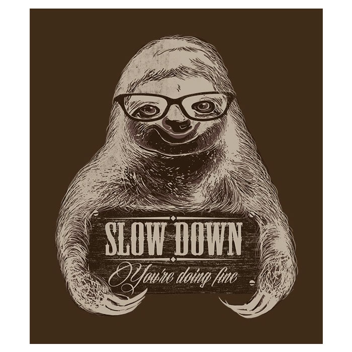 Image result for slow down