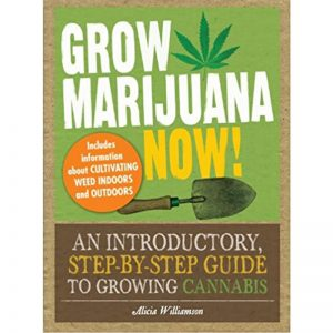 Grow Marijuana Now!