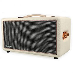 HolySmoke Retro Bluetooth Speaker – White – Birdwood