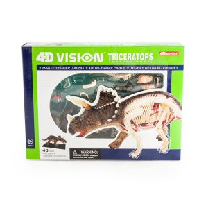 4D Anatomy Triceratops