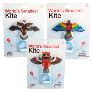World's Smallest Kite - Birds